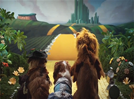 Dalia Gellert - COMMERCIALS - BBC: WIZARD OF DOGZ